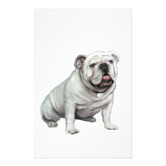 English Bulldog - White 1 Customized Stationery