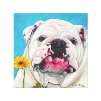 English Bulldog with daisy Canvas Print