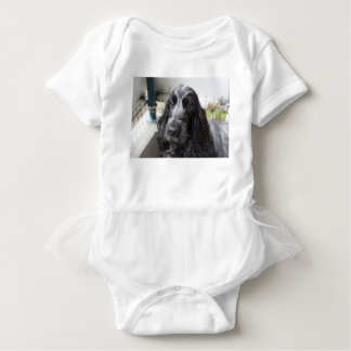 English Cocker Spaniel Baby Bodysuit