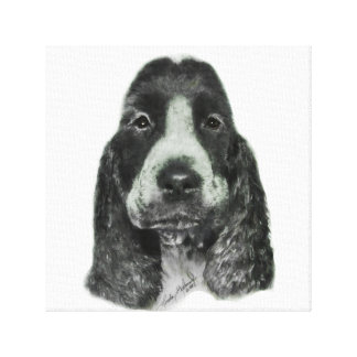 English Cocker Spaniel Canvas Prints