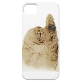 English Cocker Spaniel Case For The iPhone 5