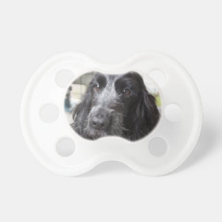 English Cocker Spaniel Dummy