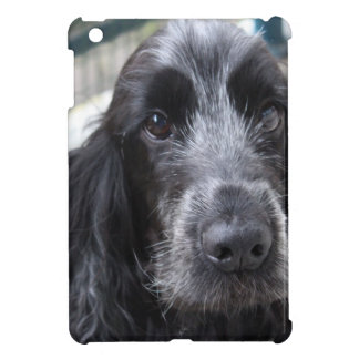 English Cocker Spaniel iPad Mini Cases