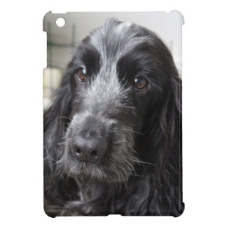 English Cocker Spaniel iPad Mini Cover