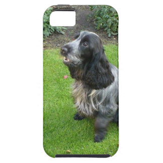 English Cocker Spaniel iPhone 5 Case