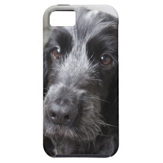 English Cocker Spaniel iPhone 5 Covers