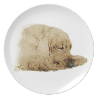English Cocker Spaniel Plate