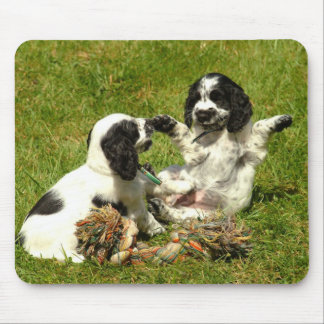 English Cocker Spaniel Puppies Mousepad