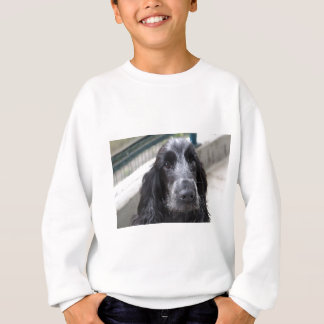 English Cocker Spaniel Sweatshirt