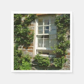 English Cottage I Paper Serviettes