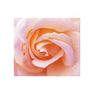 English Country Garden Pink and Peach Rose Wrapped Canvas Print