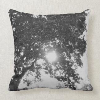 English countryside sun through a tree cushion