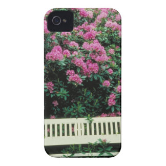 English Garden iPhone 4 Covers