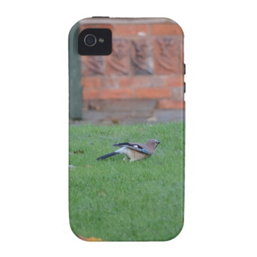 English Jay Case For The iPhone 4