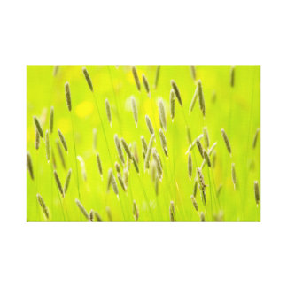 English Meadow - Impressionist Style Canvas Print
