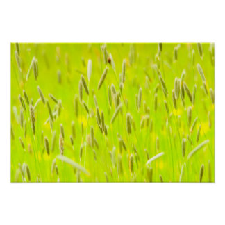 English Meadow - Impressionist Style Poster