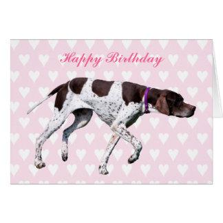 English Pointer dog happy birthday card
