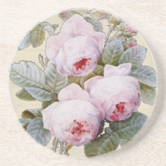 English Rose Garden Bourbon Pink Floral Drink Coaster
