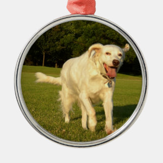 English Setter Metal Ornament