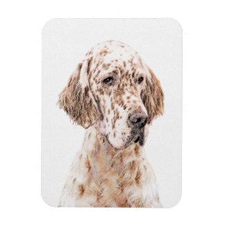 English Setter Orange Belton Painting Dog Art Magnet