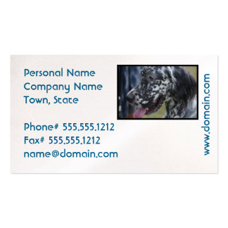 English Setter Up Close Pack Of Standard Business Cards