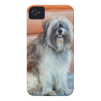 English Sheep-Dog for Pet-lovers iPhone 4 Case