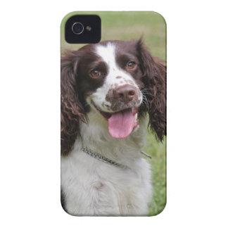 English Springer Spaniel dog beautiful photo, gift Case-Mate iPhone 4 Case
