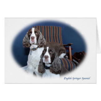 English Springer Spaniels Note Card