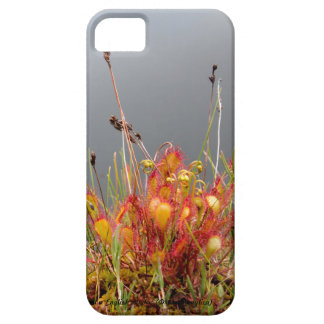 English Sundew Case For The iPhone 5