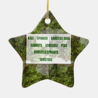 ENJOY LEAFY GREEN VEGETABLES HEALTHY CHOICES CERAMIC STAR DECORATION