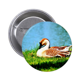 Enjoy peace of mind with you button