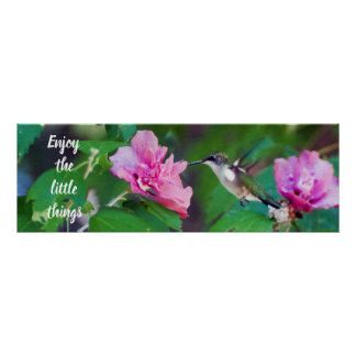 Enjoy the Little Things Hummingbird Poster