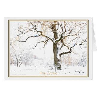 Enjoy the Simple Pleasures of the Season: Holiday Card