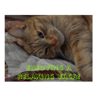 , Enjoying a relaxing vaca! Postcard