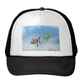 Enjoying a Swim Cap