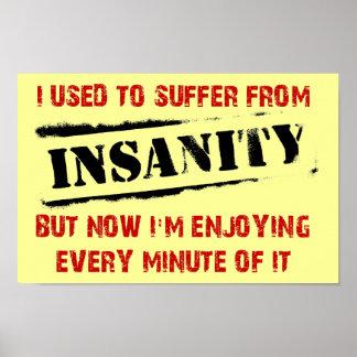 Enjoying Insanity Funny Poster Sign