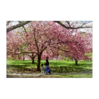 Enjoying the Cherry Trees Acrylic Wall Art