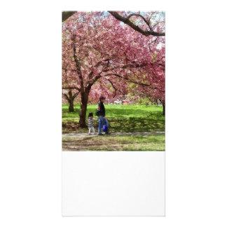 Enjoying the Cherry Trees Card