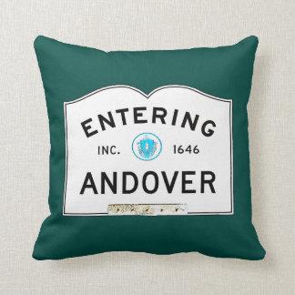 Entering Andover Cushion