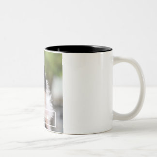Entertain Me - Funny Cat Mug