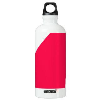 Enthusiasm Water Bottle