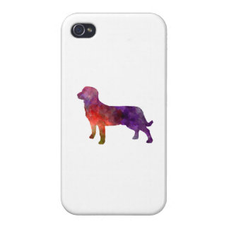 Entlebuch Cattle Dog in watercolor iPhone 4/4S Cases