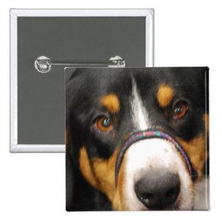 Entlebucher Mountain Dog Button