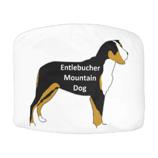 entlebucher mt dog name silo color pouf