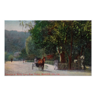 Entrance View to Shady Lane, Horse Carriage Poster