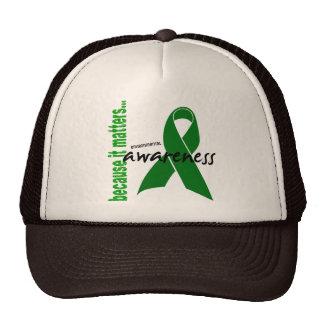 Environmental Awareness Mesh Hat