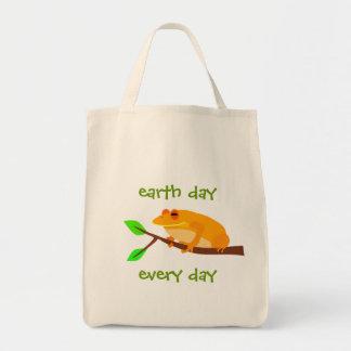 Environmental Frog