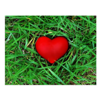 Environmentally friendly love - Postcard
