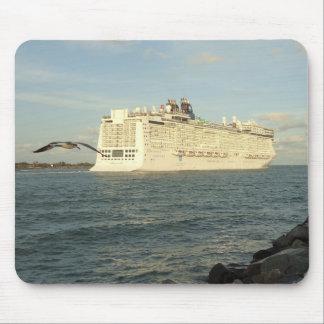 Epic Pursuit - Bird Following Cruise Ship Mouse Pad