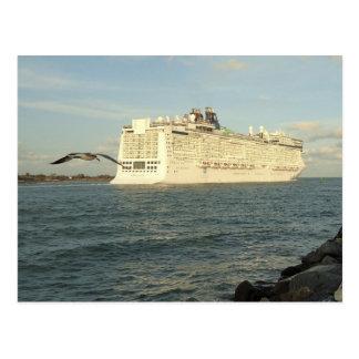 Epic Pursuit - Bird Follows Cruise Ship Custom Postcard